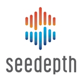 SeeDepth-graphic-wordmark