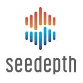 SeeDepth-graphic-wordmark