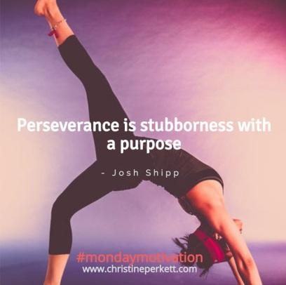 stubborn_